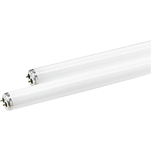 Ge Fluor Bulb Kitchen And Bath 48 In. T12 Med Bi Pin G13 40 W 2900 Lumens 3000 K Energy Star : No Pa