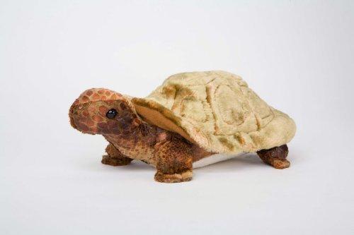 Speedy Tortoise - Tortoise Sale