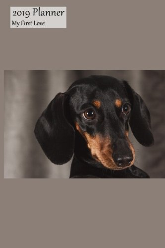 t Love: Medium Weekly Monday Starting 2019 Organizer Or Appointment Book With Dachshund Cover ()