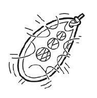 RUBLEX - 5 Cucharillas de pesca C-TURBO-2 APR 3,50 gms. Anz. Simple sin muerte: Amazon.es: Deportes y aire libre