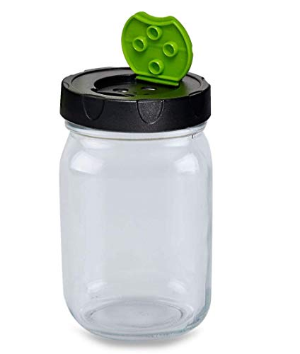 Carca Kitchen Kit, of Easy-Busy 16 Oz (Pint) Clear Glass Mason Jar With Ball Dry Herb Plastic Lid, Regular mouth Ideal Spice Holder, Sugar Storage, kombucha jar & Coffey Bean Container (16 Oz)