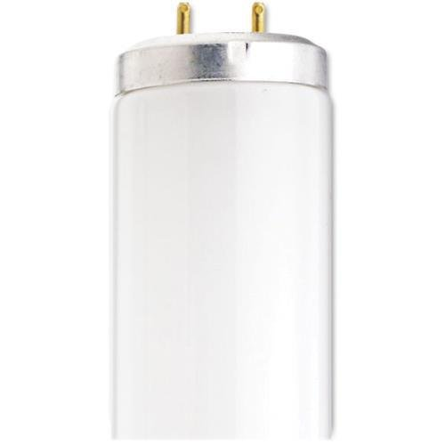 S2927 Satco T12 40-watt Fluorescent Light - Cool White - 40 W - 120 V AC - G13 - 30 / Carton by Satco
