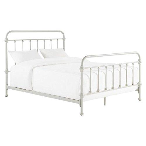 Birch Metal Bed - Metal Bed, Queen, Silver Birch, Metal Slats, Bundle with Ebook for Home Furniture