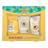 Burts Bees Essential Kit Facial Face Essentials Burt's Bees 1 Kit