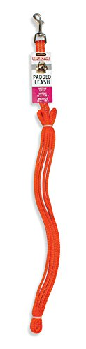 "Aspen Pet Products Reflective Pad Lead, Orange, 5/8"" x 6'"
