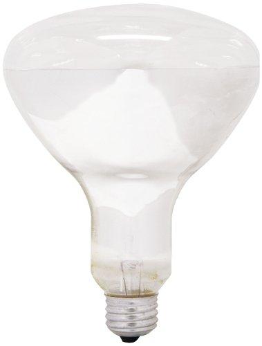 GE Lighting 21256 300 watt 1 Pack