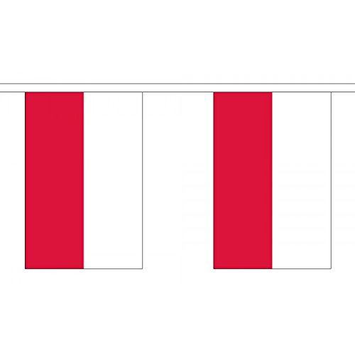 3 Metres 10  9  X 6   Flag Poland Polish Federal 100  Polyester Material Bunting Ideal Party Decoration For Street House Pubs Clubs Schools