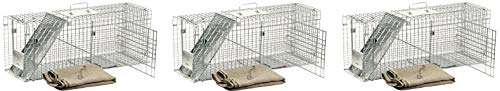 (Havahart 1099 Feral Stray Cat Rescue Kit (Pack of 3))
