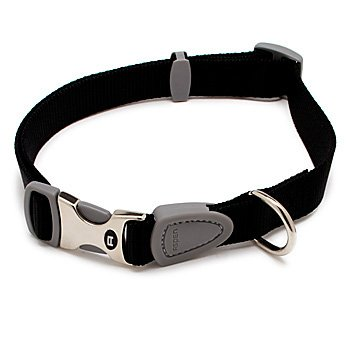 Petmate Signature Series 1-Inch by 18-26-Inch Adjustable Collar, Black, My Pet Supplies