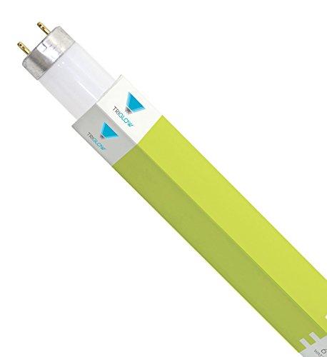 (Pack of 10) F17T8/765 24'' 17-Watt Straight T8 Fluorescent Tube Light Bulb, Daylight (6500K) 10 Light Bulbs by Triangle Bulbs (Image #1)