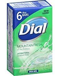 (Dial Mountain Fresh Antibacterial Deodorant Soap, 4 oz, 6)