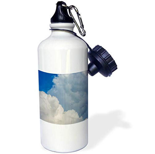 3dRose Alexis Photography - Nature Clouds - White cumulus clouds, blue sky, a swallow bird in the air. Freedom - 21 oz Sports Water Bottle (wb_287388_1) by 3dRose