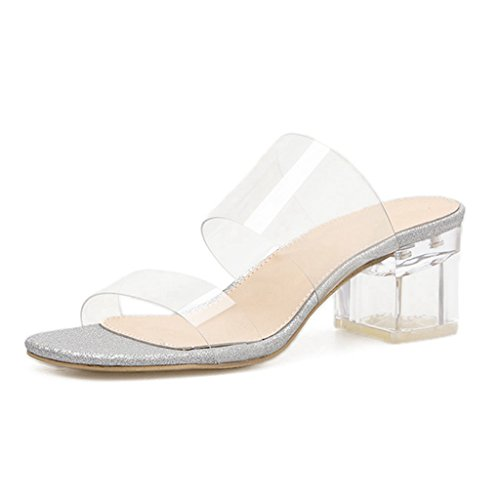 GIY Womens Low Block Heel Slide Sandals Lucite Clear Slip On Chunky Heels Sandal Slippers Silver