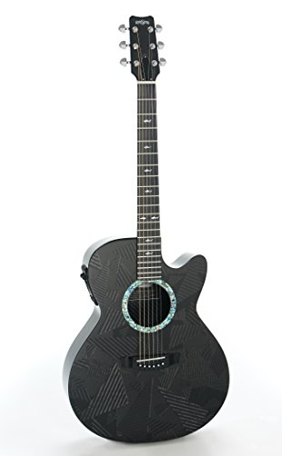 RainSong Guitars Black Ice Series BI-WS1000N2 Acoustic-Electric Guitar, Natural carbon (Rv Series Guitar)
