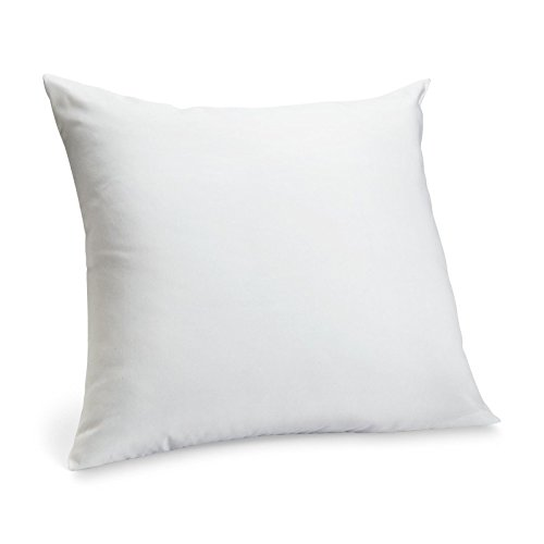 Bed Up Down (Luxurious 24-by-24 Inch 50% White Goose Down and 50% Goose Feather Euro Pillow, White)