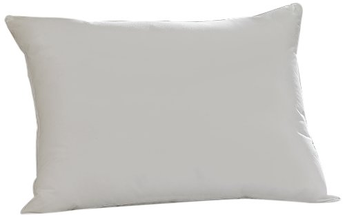 Aller-Ease Hot Water Washable Allergy Pillow, Standard, Medium