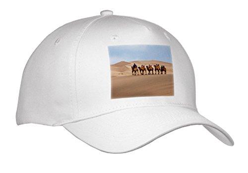 Gobi Desert Camel - 6