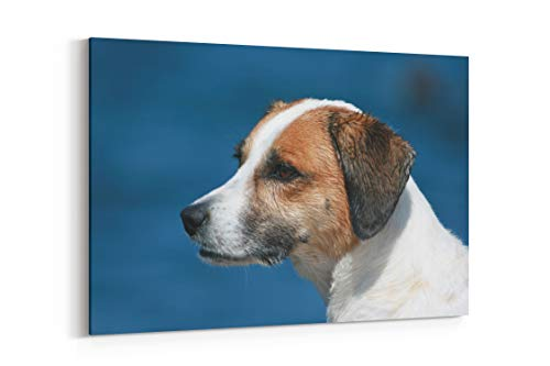 Beagle Welsh Springer Spaniel Pet and Animal - Canvas Wall Art Gallery Wrapped 12