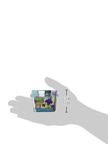 Dunecraft Laura Lobelia Science Kit