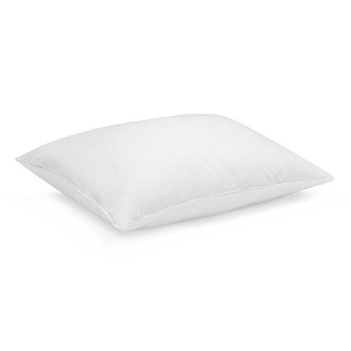 Sleep Innovations F PIL 15160 BP WHT Anti Allergy Pillow