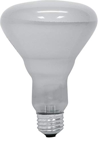 GE 65 Watt Soft White 580-Lumen Floodlight BR30 Light Bulb, (12 Pack)