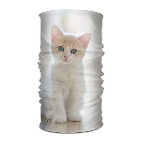 LODRR Headbands Cute White Cat Headwear Multifunctional Yoga Sports Magic Scarf Head Wrap Turban Hair Scarf Balaclava Headwear Head Wrap -