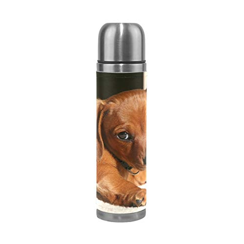 OuLian Thermos Weiner Dog Attacking Mirror Cycling Insulated Stainless Steel Water Bottle Leak Proof Thermos Leather Cover 17 Oz by OuLian