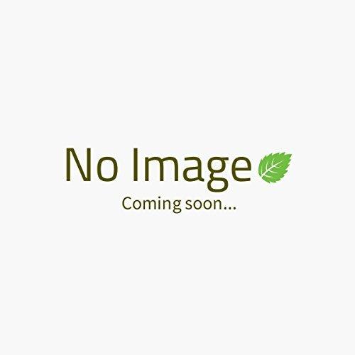 -pukka-herbs-star-anise-cinnamon-ft-20-bag-bundle-by-pukka-herbal-ayurveda