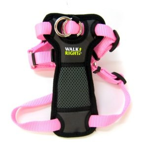 Coastal Pet Walk Right Padded Harness, Bright Pink, Adjustable to fit girths 20'' to 30''