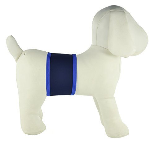 Old Navy Dog - PlayaPup Male Dog Belly Band, Navy, Large