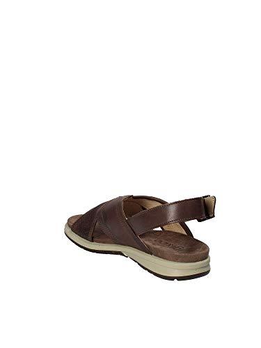 41 1129 IGI Uomo Marrone Sandalo amp;CO X55qS