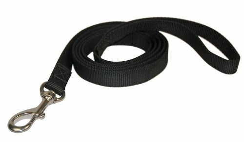 Dean & Tyler  Night Walk Double Ply Nylon Dog Leash with Stainless Steel Snap Hook, 4-Feet by 3 4-Inch, Black