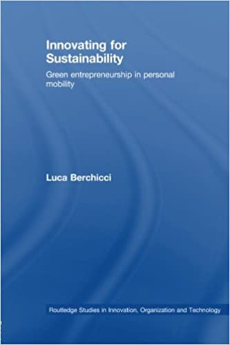 innovating for sustainability berchicci luca