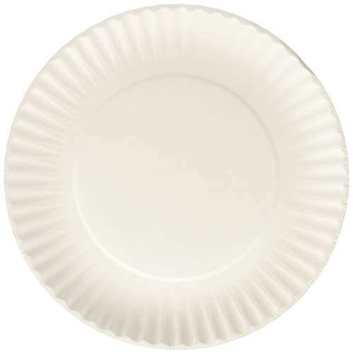 Paper Plate Awards (Nicole Home Collection 200 Count Everyday Dinnerware Paper Plate, 9-Inch,)