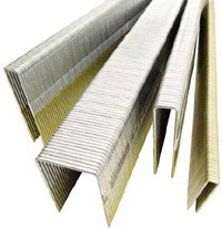 Senco L10BABN 18 Gauge by 1/4-inch Crown by 5/8-inch Electro Galvanized Staples (5,000 per box) by Senco