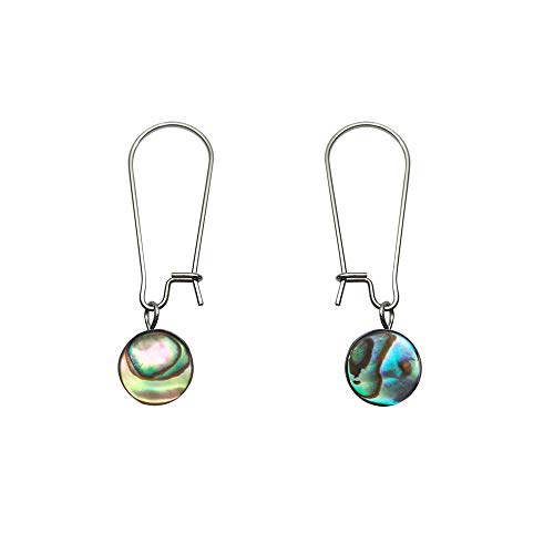 - Natural Abalone Beads Safety Stainless Steel Dangle Earrings Changeable Charms for Women Round