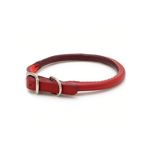 "Petco Rolled Leather Dog Collar in Red, 3/8"" Width, X-Small"
