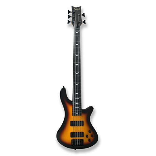 Fretless 5 String Electric Bass Bolt_On Maple Neck,Poplar Body Sunburst