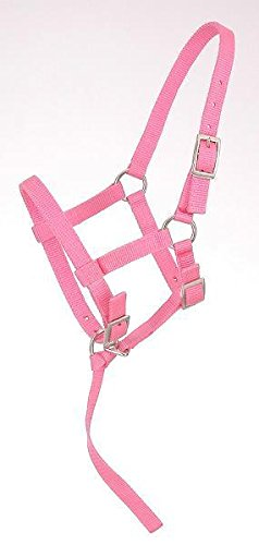 Tough 1 Adjustable Weanling Foal Nylon Halter with Removable Nylon Catch Strap. Color Choicce (Pink)