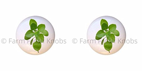 Leaf Single Herb (SET OF 2 KNOBS - Oregano Leaves - Herbs Spices - DECORATIVE Glossy CERAMIC Cupboard Cabinet PULLS Dresser Drawer KNOBS)