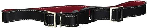 genuine-audi-accessories-ahp730lg-large-leather-dog-collar