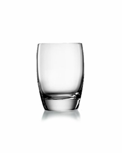 Luigi Bormioli 10235/01 Michelangelo 9 oz Whisky Glasses, Set of 4, Clear