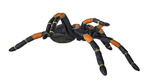 Safari Ltd Hidden Kingdom - Orange-Kneed Tarantula - Realistic Hand Painted Toy Figurine for Ages 3 and Up - Large (Eat Smaller Fish To Grow Bigger Game)