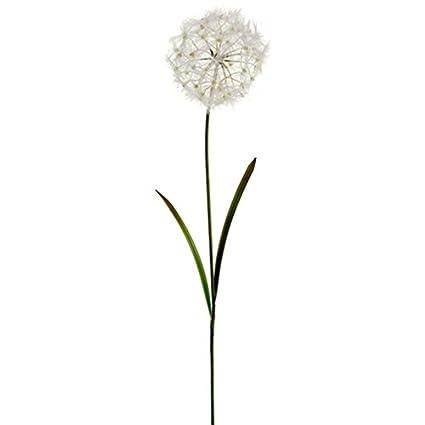 Amazon 40 silk dandelion flower spray cream pack of 12 40quot silk dandelion flower spray cream pack mightylinksfo