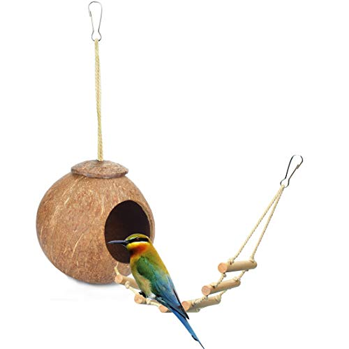 - Beangel 100% Natural Coconut Hideaway with Ladder, Natural Nest Lovebird Sparrow Coconut Shells Bird House, Bird and Small Animal Toy (Smooth Surface)