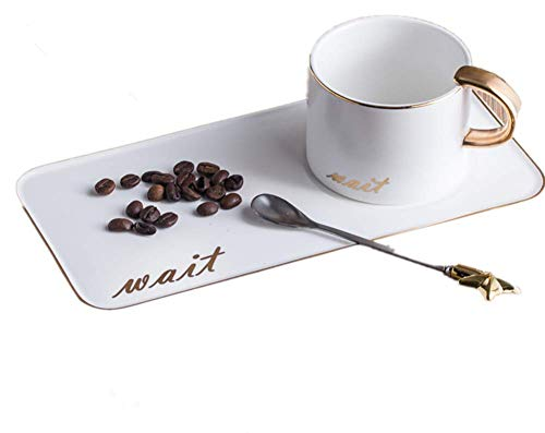 Ceramic Coffee Cup with Saucer,250 ml/8.45 oz Espresso Cups with Exquisite Gift Box Coffee Spoon, perfect for Specialty Coffee Drinks, Latte, Cafe Mocha and Tea.(Black/White) (White) ()