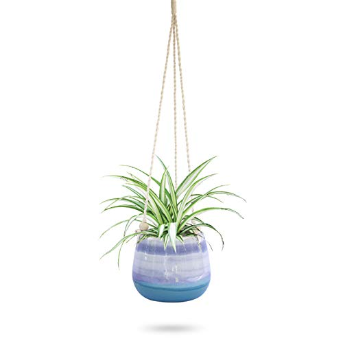 Ceramic Hanging Planter | Blue Succulent Pots | Round Plant Holder Container | Cactus Pot with Cotton Rope Hanger | Indoor Outdoor Decor | 23 Bees (1 Pack x Blue Horizon) (Planter Hanging Ceramic)