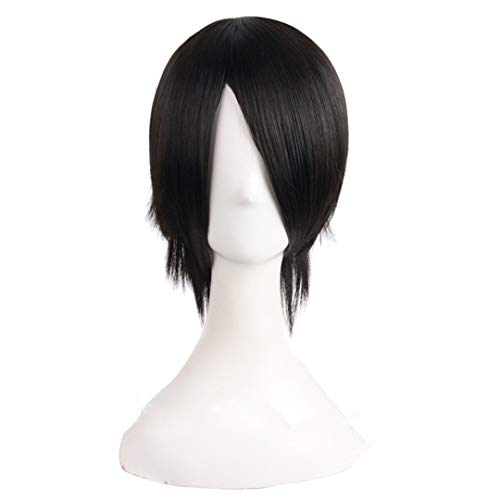 Short Straight Synthetic Wigs Black Natural Black 14 Inches Hair Heat Resistant Wig Halloween Fake Hairpieces Peruca T1B/613 14inches]()
