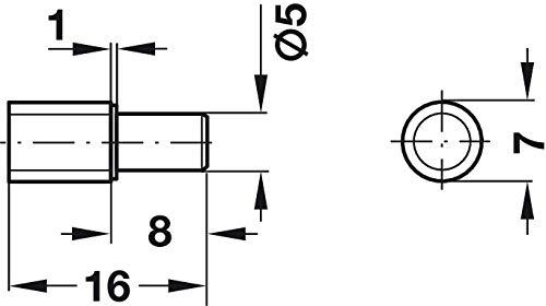50 St/ück Gedotec Fach-Bodentr/äger zur Befestigung Regal-Bolzen Montage Regal-D/übel K/üche Stahl vernickelt H3109 Kappe /Ø 7 mm Bohrloch /Ø 5 mm