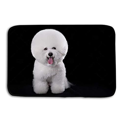 YGUII Print Plush Bathroom Decor Mat with Non Slip Backing Coral White 16X23.6in (40x60cm) Bichon Frise Beautiful Portrait Dog Breed Black Background